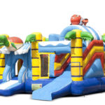 Multiplay Tortue € 2595