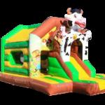 Multifun Vache 2.490€